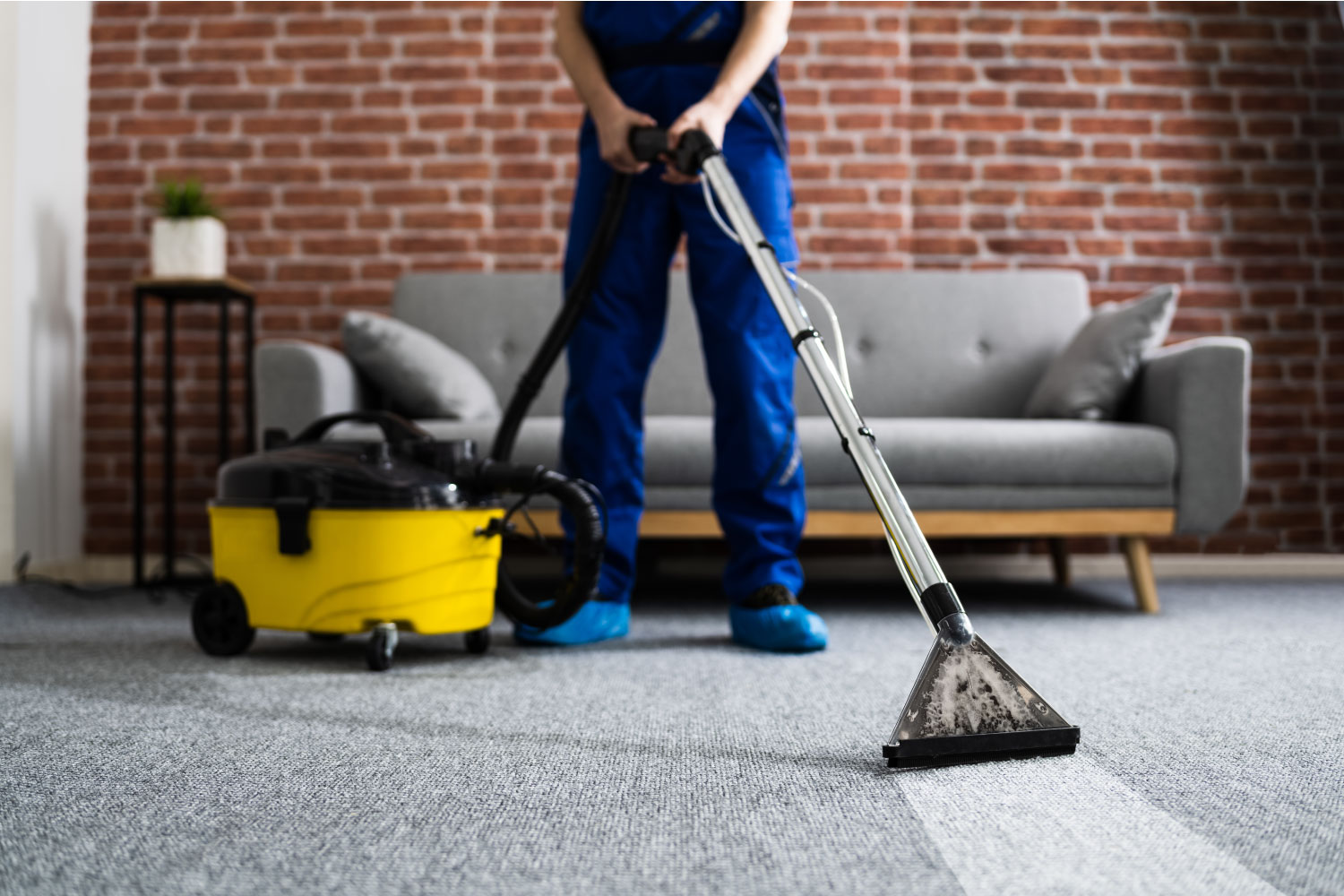 a professional cleaner vacuuming a home carpet